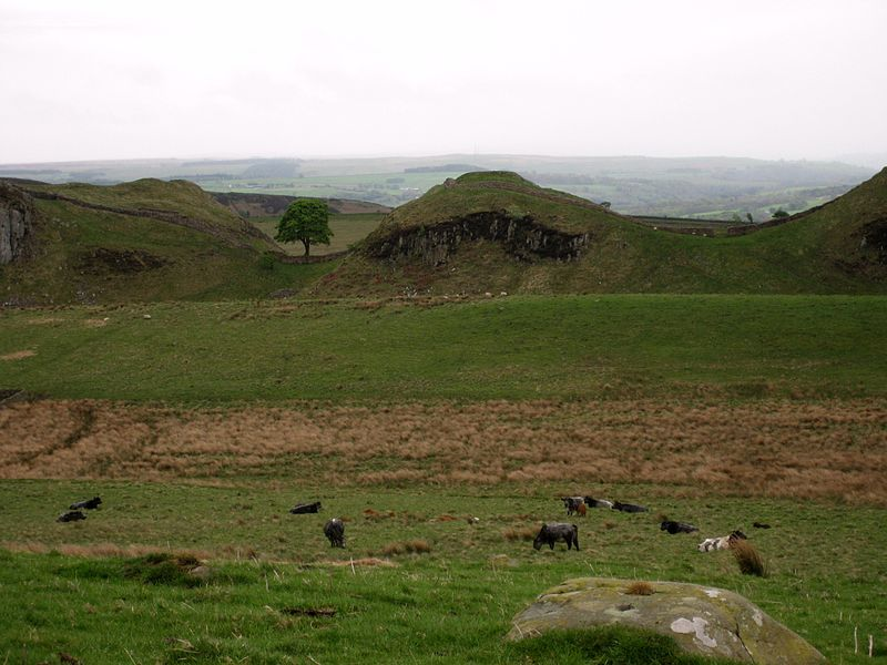 File:Sycamore Gap, distant view 2.jpg