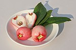 Syzygium fruit.jpg