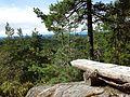 Tømmeråsen 2 - panoramio.jpg