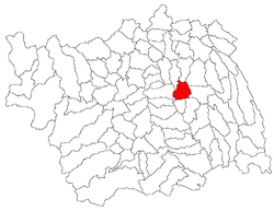 Location of Tamași