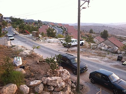 איך מגיעים באמצעות תחבורה ציבורית אל תלם? - מידע על המקום