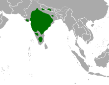 Tetracerus quadricornis map.png