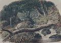 The Entrance to a Wood MET ap1977.182.5.jpg