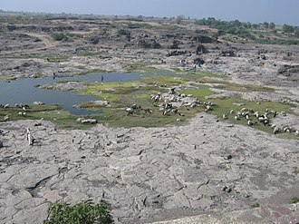 Maharashtra - Dried up Godavari at Puntamba, Ahmadnagar district after a poor Monsoon
