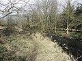 The Ravernet River near Lisburn - geograph.org.uk - 1764211.jpg