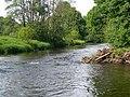 The River Doon - geograph.org.uk - 829813.jpg