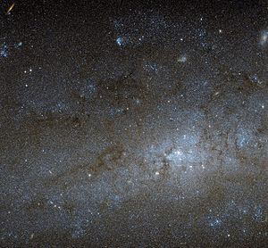 NGC 247 - Image: The centre of NGC 247