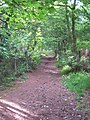 The footpath to the summit of Beacon Hill - geograph.org.uk - 2605139.jpg