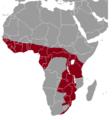 Thryonomys swinderianus range map.png