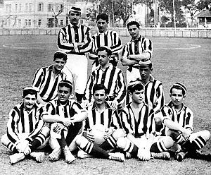 Botafogo de Futebol e Regatas - The team that won its first Campeonato Carioca in 1907