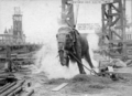 Topsy elephant death electrocution at luna park 1903.png