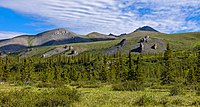 Tors behind Wolf Creek campsite on Firth River, Ivvavik National Park, YT.jpg
