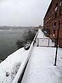Toulouse neige 20130225 Allée du parc Raymond VI.jpg