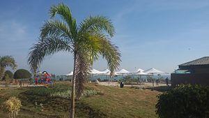 Khandwa - Hanuwantiya tourist complex