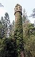 Tower in Ivy.jpg