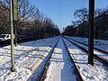 Tram Seestrasse 18.01.2016 11-13-19.jpg