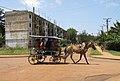 Transport in Moa (Cuba).jpg