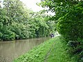 Trent and Mersey Canal - geograph.org.uk - 444643.jpg
