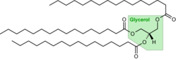 Tripalmitoylglycerol.png