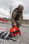 Triple Nickel medics step up during mass casualty exercise DVIDS896294.jpg