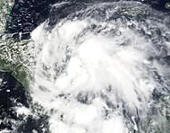 Tropical Depression Nine (2001).JPG