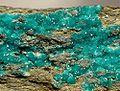 Turquoise-180727.jpg