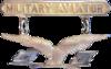 Estados Unidos - Alas de aviador - 1913.png