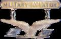 EUA - Aviator Wings - 1913.png