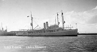 USS <i>Eider</i> (AM-17)