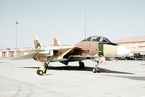 "A ""Top Gun"" F-14A, painted to resemble an Iranian fighter for adversary training."