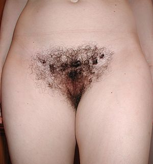 Labia - Labia with pubic hair