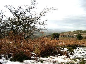 Quantock Hills - Image: Upland Quantocks