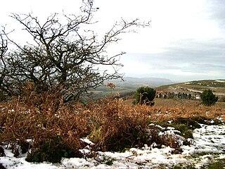 Quantock Hills range of hills west of Bridgwater in Somerset, England