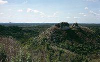 photographie d'une forêt claire avec des ruines mayas