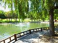 Valdemoro - Parque de Enrique Tierno Galván 3.jpg