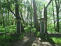 Vana-Vigala mõisa kalmistu 01.JPG
