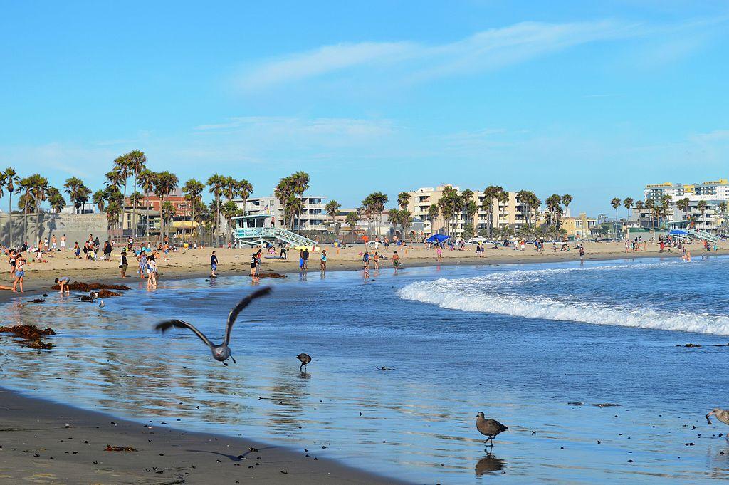 Florida Venice Beach Weather
