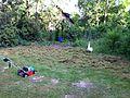 Vertikutierer in einem Garten.jpg