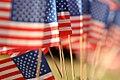 Veterans Day 11.12.12 (8182193807).jpg