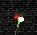 Vietnam Memorial roses.jpg