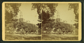 View of the Brewer fountain in Boston Common, from Robert N. Dennis collection of stereoscopic views.png