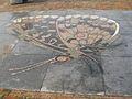 Vlinder Waterlandplein.JPG