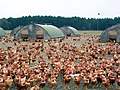 Volailles des Landes.jpg