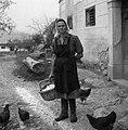 Vsakdanja delovna noša, Drašiči 1965.jpg