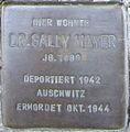 Würzburg Mayer Sally Dr..jpeg