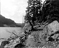 Wagon road, probably vicinity of Lake Keechelus, Washington, ca 1911 (TRANSPORT 236).jpg