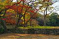 Wakayama Castle26n4592.jpg