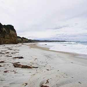 Wangaloa - Wangaloa Beach, looking north