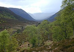 West of Alladale Lodge - geograph.org.uk - 629647.jpg