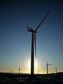 Whitelee Wind Farm - geograph.org.uk - 1074051.jpg